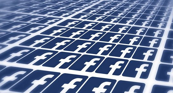 Facebook Fans / Likes